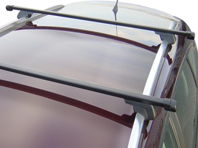Roof bar set plastic-covered steel bars