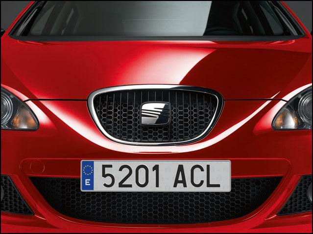 Front radiator grille (honeycomb)