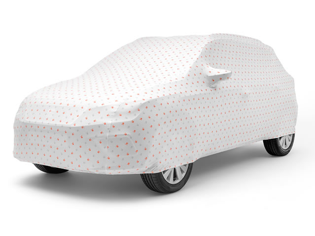Husă auto customizată